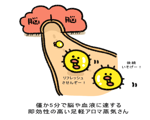 アロマが直接脳に届く図