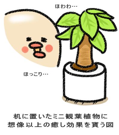 机に置いたミニ観葉植物に 想像以上の癒し効果を貰う図