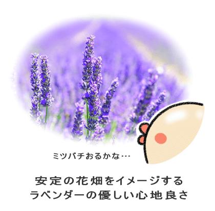 安定の花畑をイメージする ラベンダーの優しい心地良さ