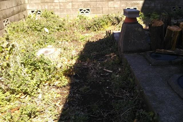 f:id:nekoyanookami:20190411175442j:plain