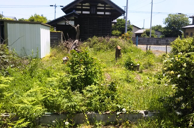 f:id:nekoyanookami:20190530211802j:plain