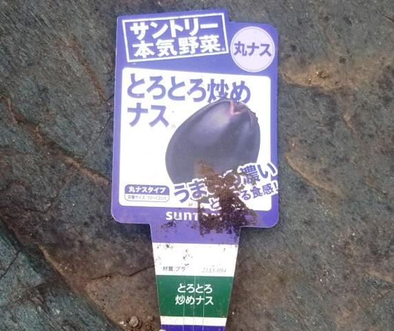 f:id:nekoyanookami:20190704195101j:plain
