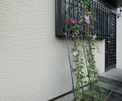 f:id:nekoyanookami:20190812155751j:plain