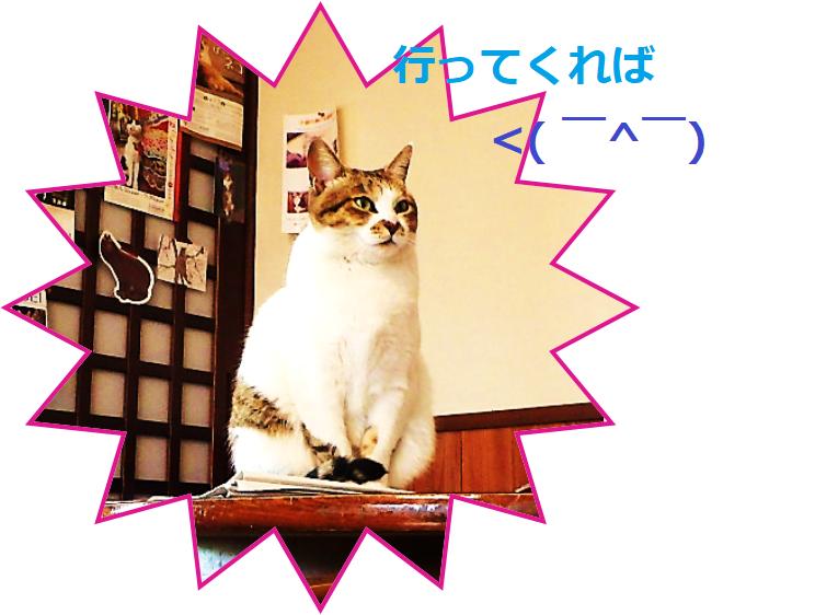 f:id:nekoyanookami:20190929143513p:plain