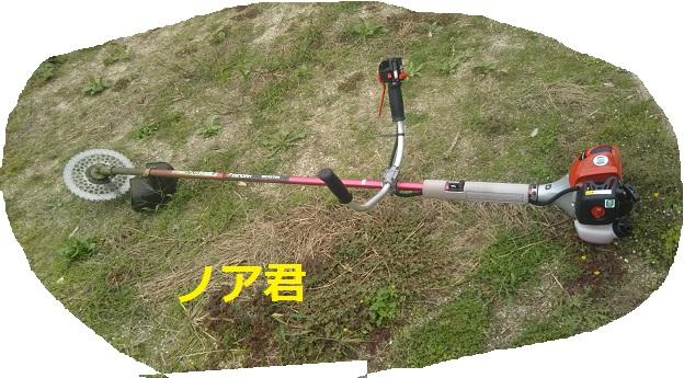 f:id:nekoyanookami:20190929143753j:plain