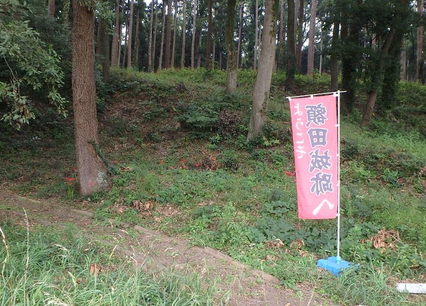 f:id:nekoyanookami:20190929144315j:plain