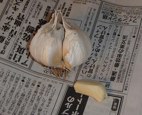 f:id:nekoyanookami:20191022113527j:plain