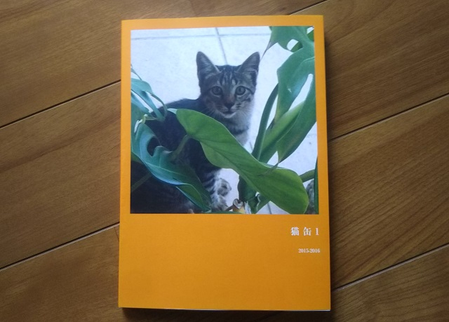 f:id:nekoyanookami:20191218213939j:plain