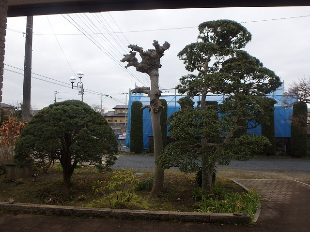 f:id:nekoyanookami:20200401182210j:plain