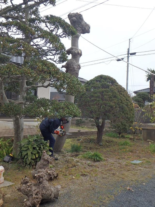 f:id:nekoyanookami:20200401183724j:plain