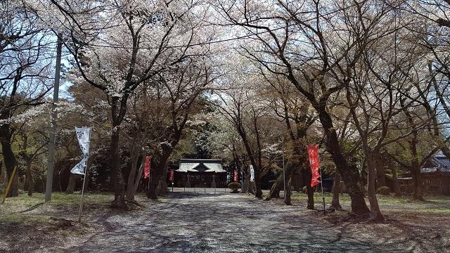 f:id:nekoyanookami:20200405175716j:plain