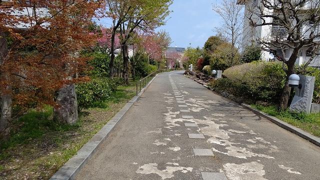 f:id:nekoyanookami:20200418120118j:plain