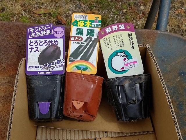 f:id:nekoyanookami:20200422170135j:plain