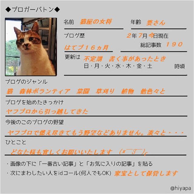 f:id:nekoyanookami:20200713173807j:plain