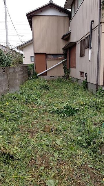 f:id:nekoyanookami:20200923174609j:plain