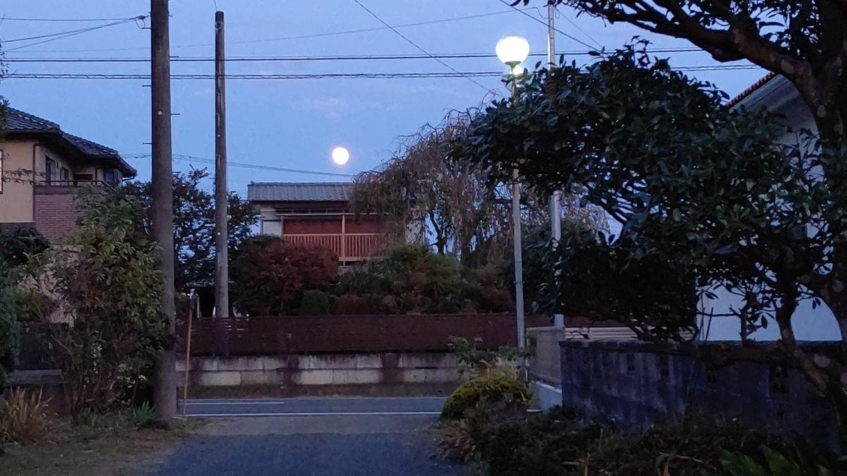 f:id:nekoyanookami:20201101172100j:plain