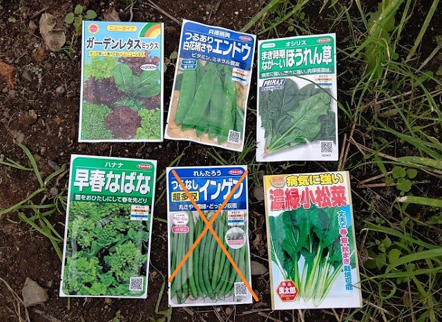 f:id:nekoyanookami:20201106171648j:plain