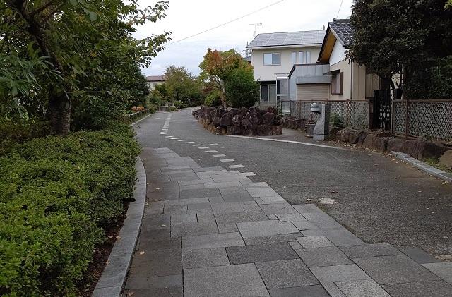 f:id:nekoyanookami:20201106172707j:plain