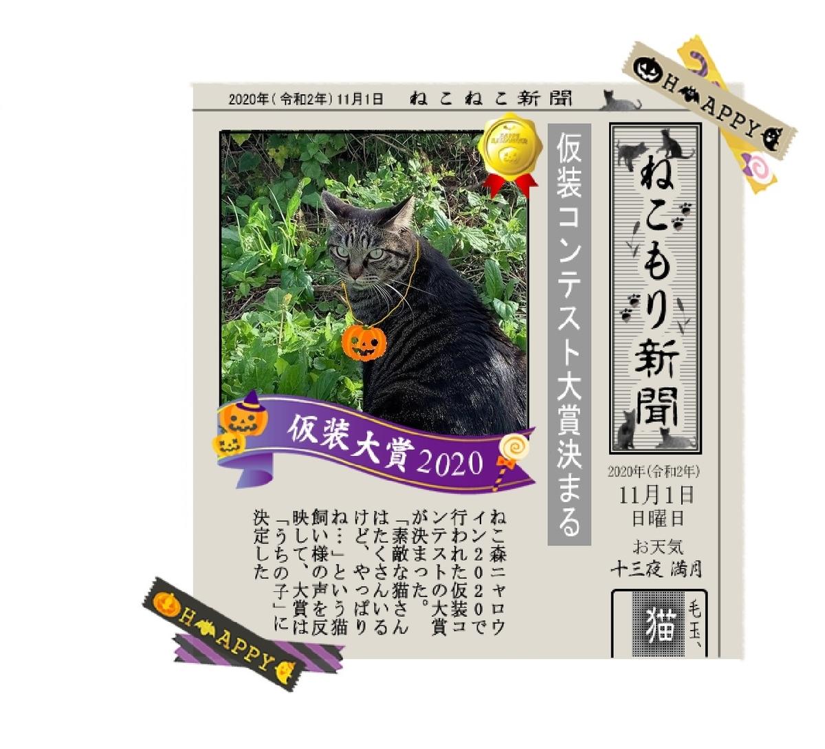 f:id:nekoyanookami:20201110200359j:plain