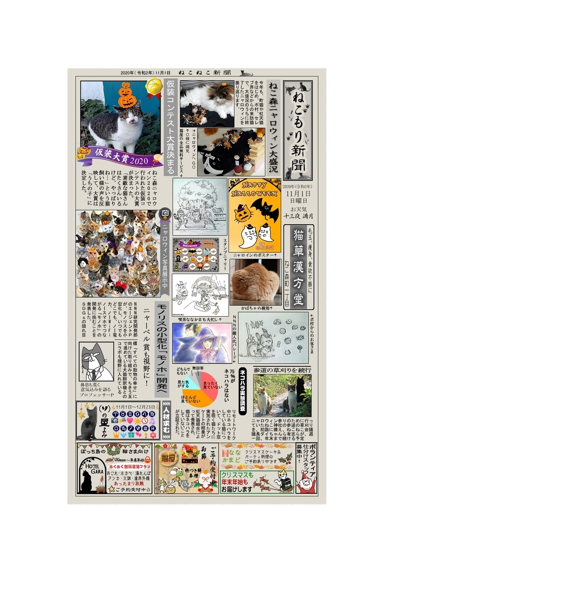f:id:nekoyanookami:20201110201005j:plain