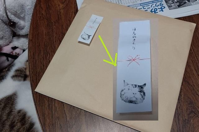 f:id:nekoyanookami:20201120180404j:plain