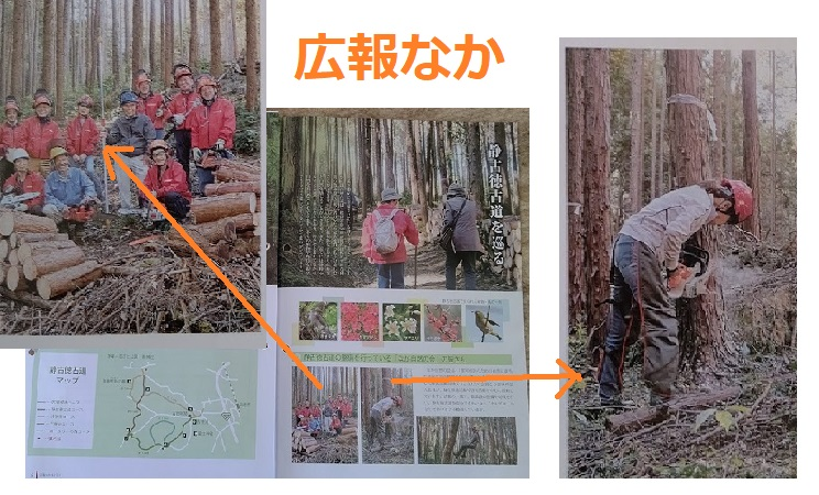 f:id:nekoyanookami:20201213222922j:plain
