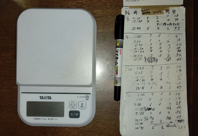 f:id:nekoyanookami:20210112184154j:plain