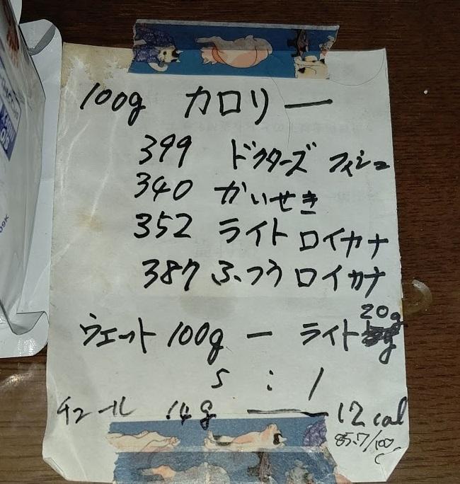 f:id:nekoyanookami:20210112184300j:plain