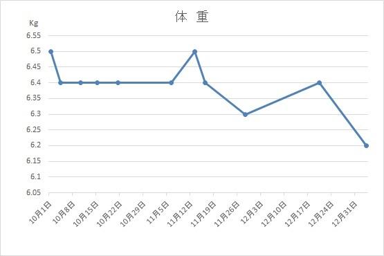 f:id:nekoyanookami:20210112212223j:plain