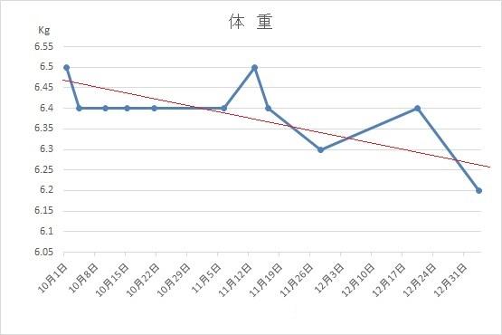 f:id:nekoyanookami:20210112212537j:plain