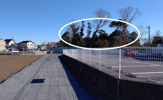 f:id:nekoyanookami:20210121163008j:plain