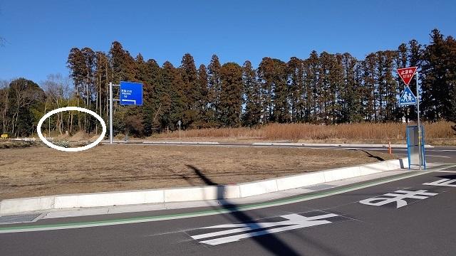 f:id:nekoyanookami:20210121163602j:plain