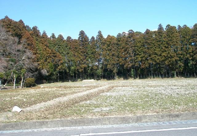 f:id:nekoyanookami:20210121164333j:plain