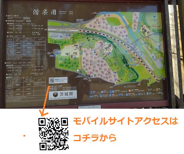 f:id:nekoyanookami:20210129161412p:plain