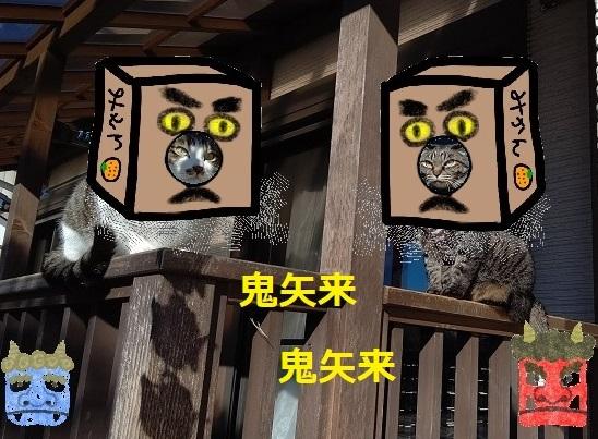 f:id:nekoyanookami:20210130225858j:plain