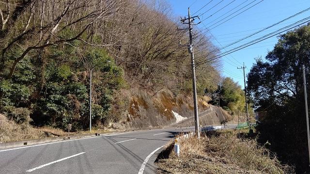 f:id:nekoyanookami:20210207143123j:plain