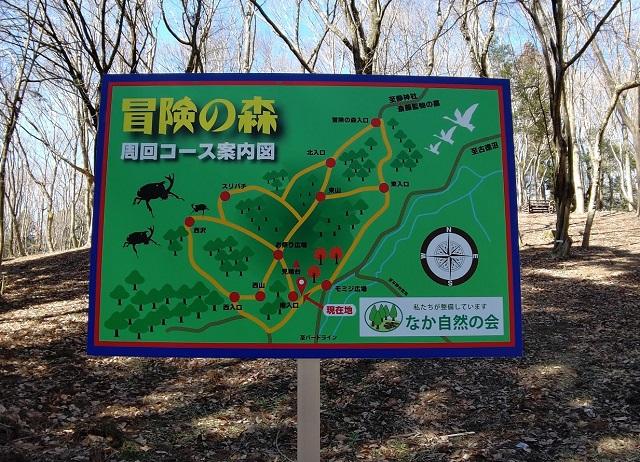 f:id:nekoyanookami:20210303175848j:plain