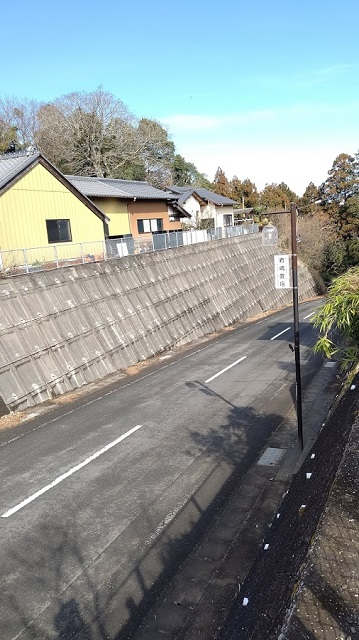 f:id:nekoyanookami:20210307174856j:plain