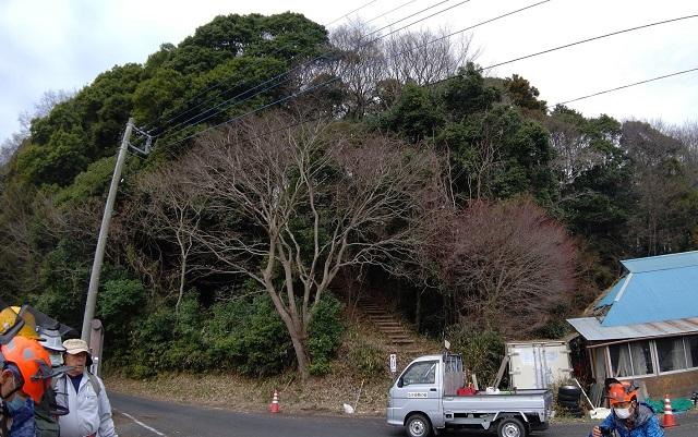 f:id:nekoyanookami:20210316150214j:plain