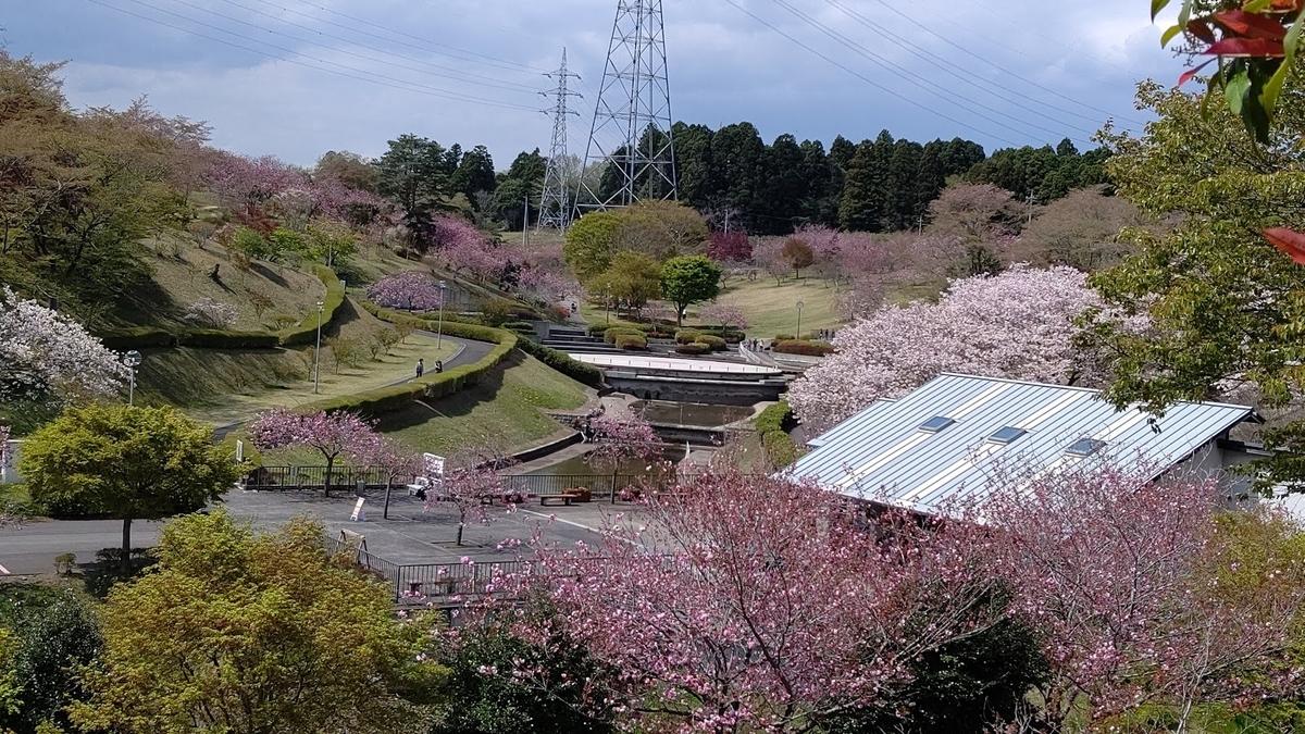 f:id:nekoyanookami:20210412231911j:plain