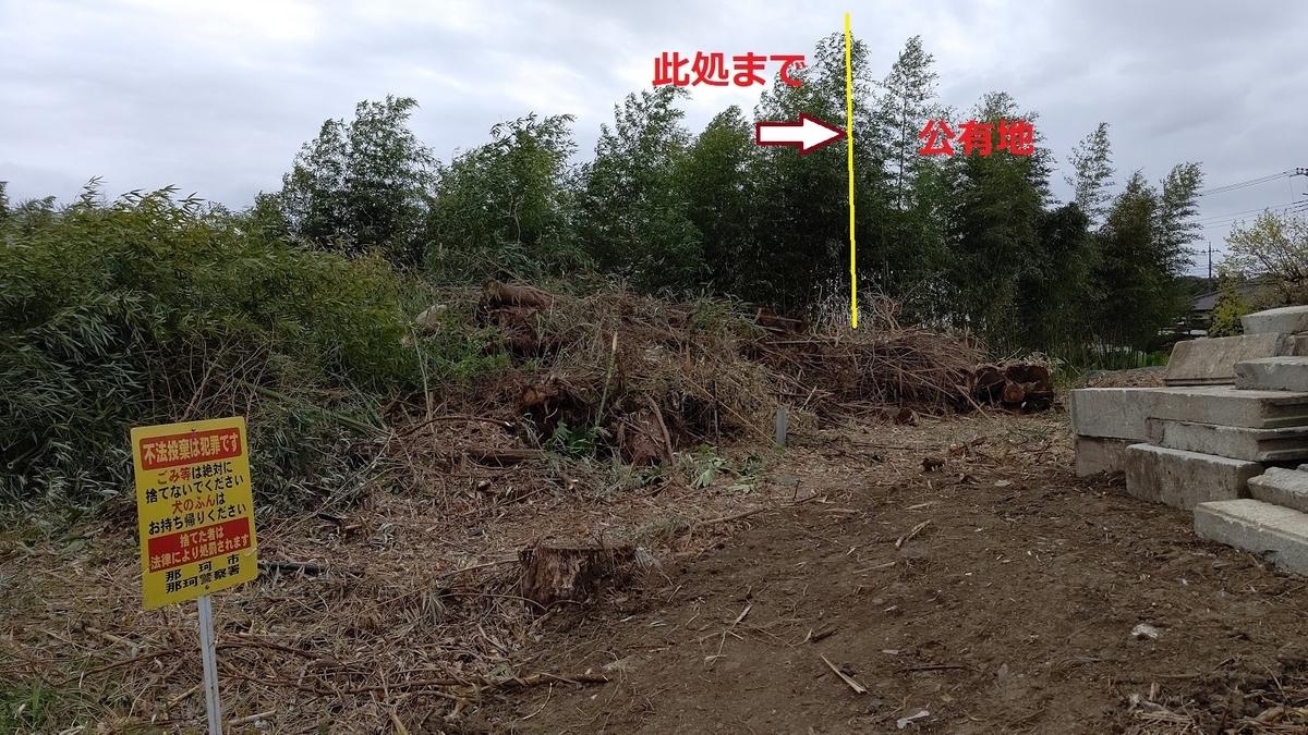 f:id:nekoyanookami:20210417162018j:plain