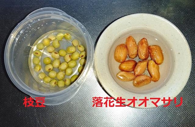 f:id:nekoyanookami:20210504223113j:plain