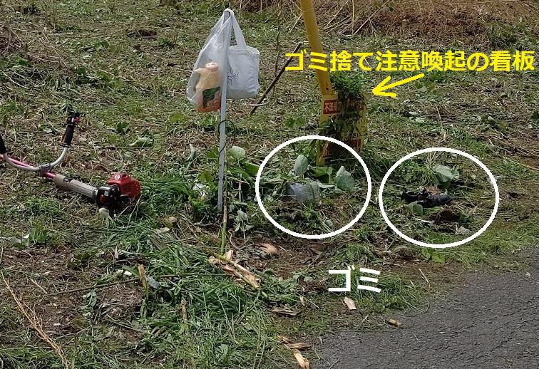 f:id:nekoyanookami:20210527143703j:plain