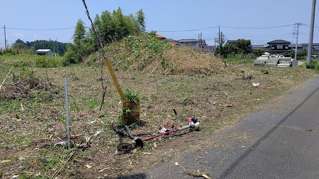 f:id:nekoyanookami:20210611224559j:plain