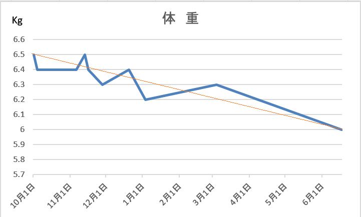 f:id:nekoyanookami:20210618155610p:plain
