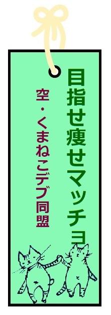 f:id:nekoyanookami:20210705232738j:plain