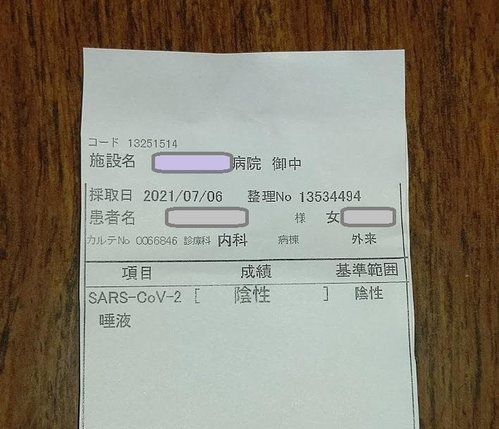 f:id:nekoyanookami:20210708151029j:plain