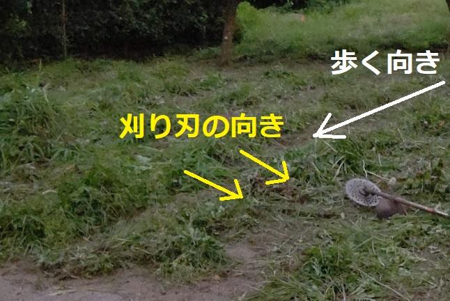 f:id:nekoyanookami:20210726221003j:plain
