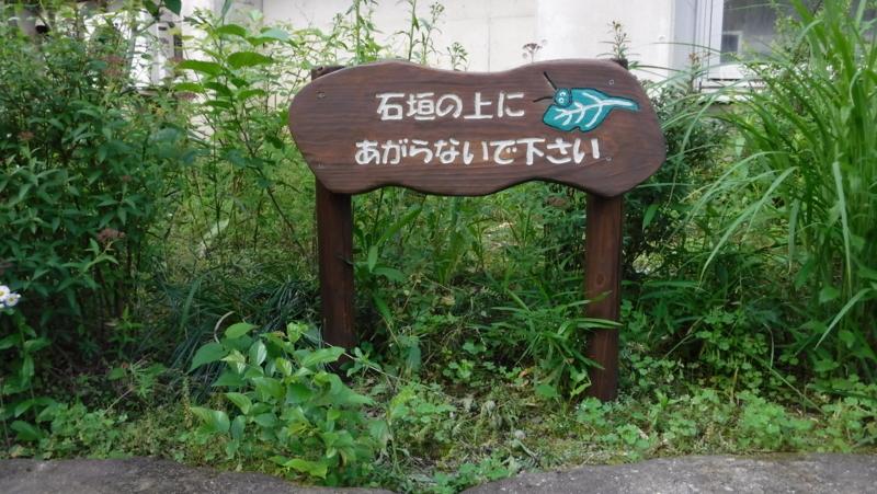f:id:nekozawatsukasa:20180520155417j:plain