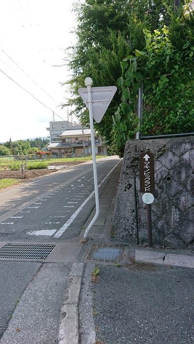 メタセコイア並木道へのアクセス